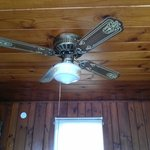 ceiling fan in room
