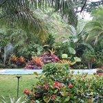 zwembad in een prachtige tuin