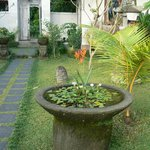 prachtige tuin rondom de villa