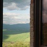 Dalla finestra.