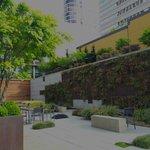Wall Garden and Courtyard