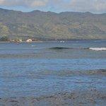 Surfing in Haleiwa