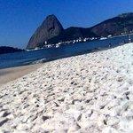 Paia do Flamengo