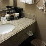 Quality Inn & Suites of Battle Creek Foto