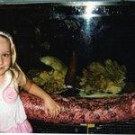 Visiting the aquarium at City Museum