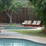 Sabi Sabi Bush Lodge-Kruger Park