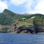 White Island-early vegetation