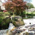 The Falls at Linton