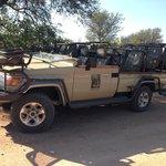 The safari vehicle.