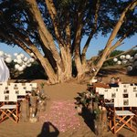 Where the wedding ceremony took place in the bush.