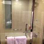 Bathroom - Shower and Bath Tub
