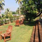 Serene Garden View