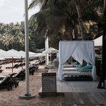 Sun Loungers at Catch Beach Club