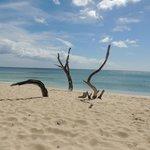 Almond beach
