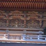 os gatos do templo