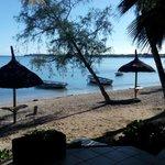 Zone de détente sous les cocotiers et orteils dans le sable