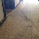 Big stains on the floor carpet.