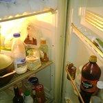 The fridge and freezer