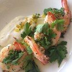 sauteed shrimp with house made yogurt - so good!
