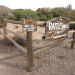 Rattlesnake mine