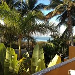 Foto de Palapas Resort