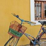 gratitude bicycle
