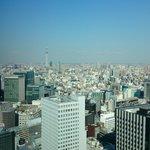Skytree view