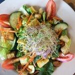 Splendid salad