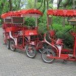 Ενοικιαζόμενα ποδήλατα