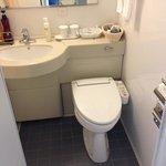 Fancy Japanese toilet