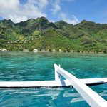 Boat Trip to private motu