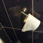 broken toilet tissue handle