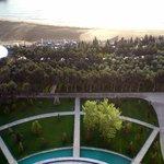 Garden between hotel and beach