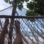 hammock bliss