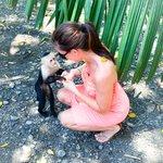 Feeding monkeys