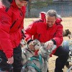 Honden heel aanhankelijk en knuffelbaar