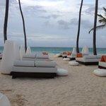 Elegant seating (near Gabi)