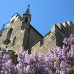 Castle with Lilacs