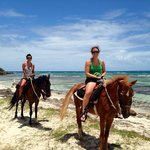 Golden Palomino Riding Stables