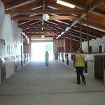 Very Clean Modern Barn