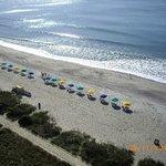 beach scene from 1132