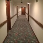 Path to the room