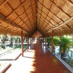 pasillos con techo a dos aguas