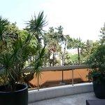 beautiful garden in Hotel