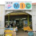 Foto de Misho MIC Road Station