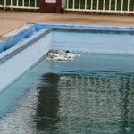 Pool with rubbish in it