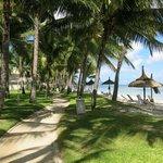 Grounds at Sugar Beach Resort