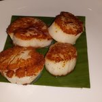 Wonderful Scallops