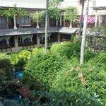 Jardim central, com piscina entre os quartos