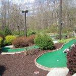 Part of mini golf course